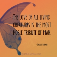 love all living creatures