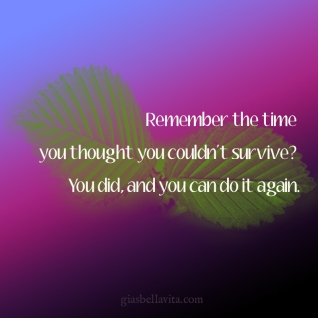 Remember the time you thought you couldn't survive? You did, and you can do it again.