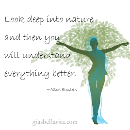 Look deep into nature and then you will understand everything better, ~Albert Einstein